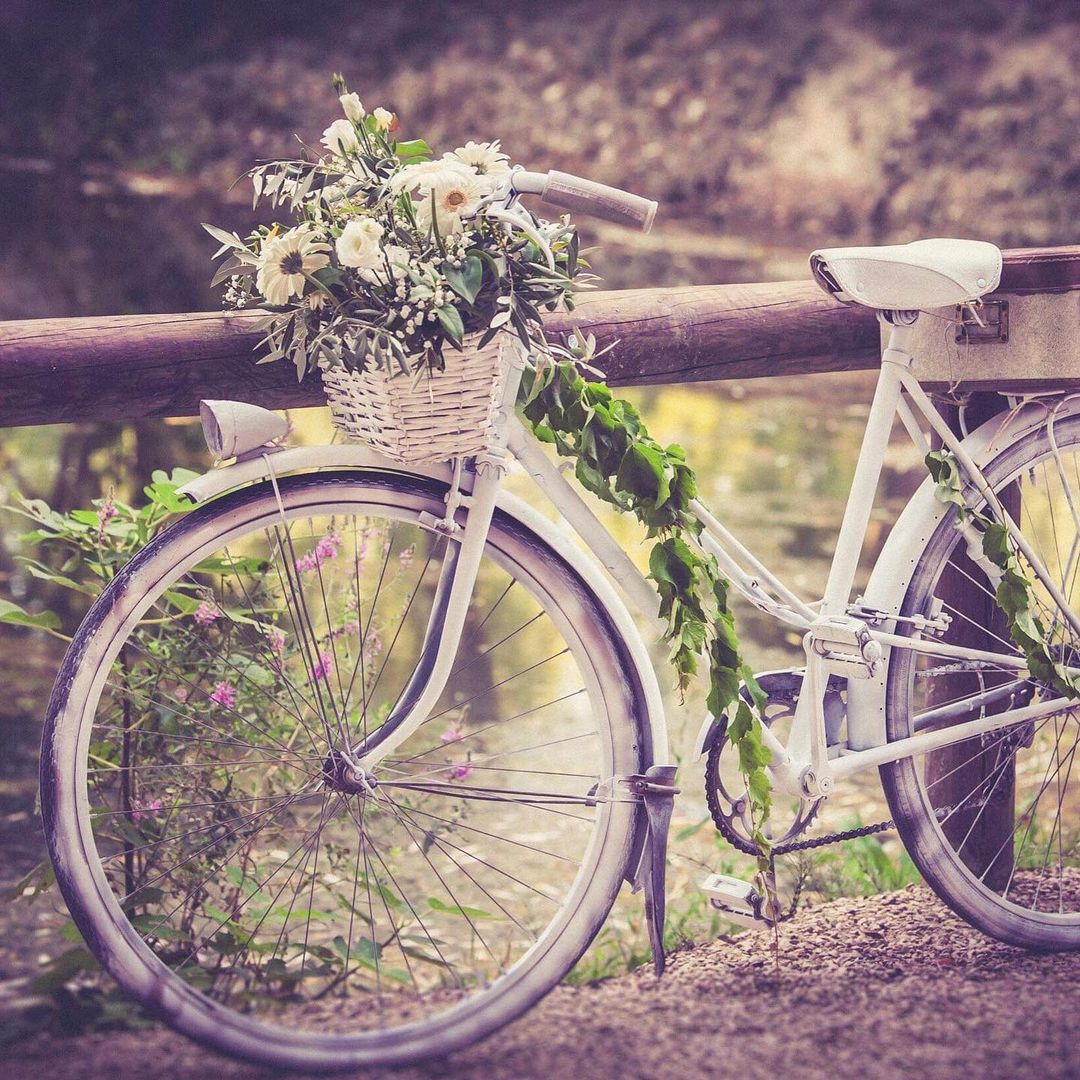 fleuriste-pertuis-fleurs-velo