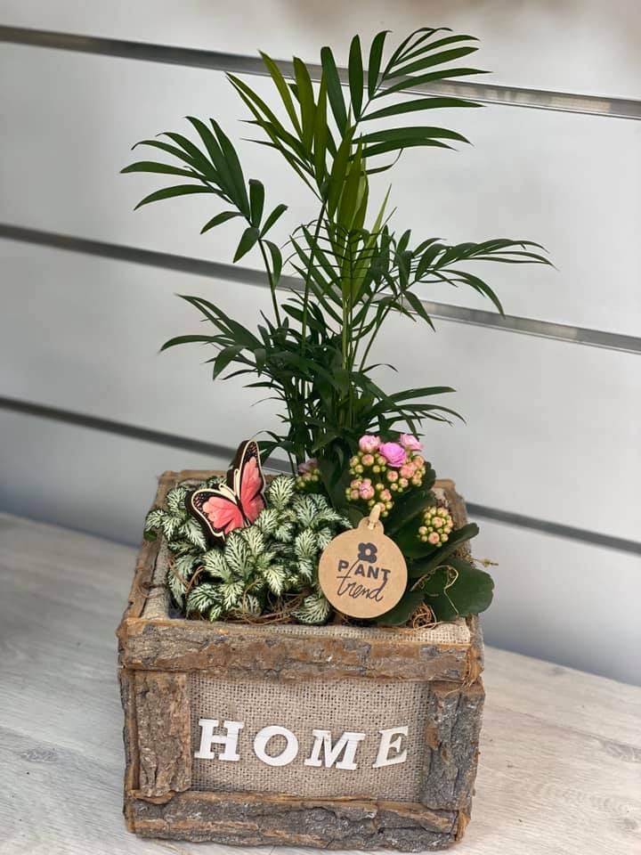 fleuriste-pertuis-composition-pertuis-fleurs-29