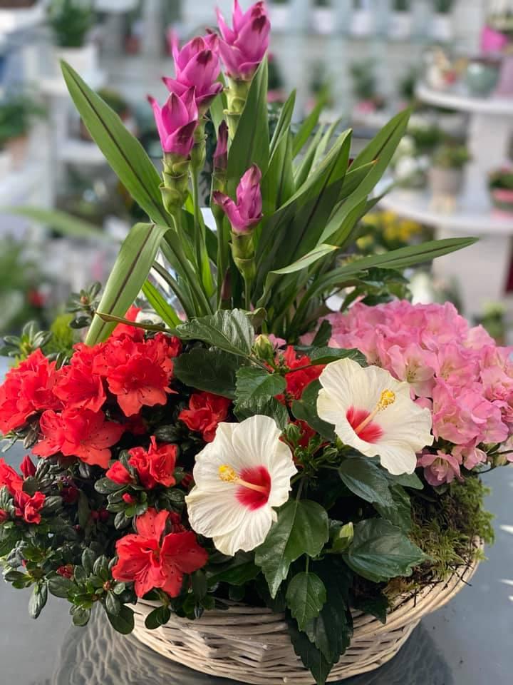 fleuriste-pertuis-composition-pertuis-fleurs-38